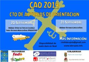 CAO 2014